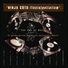 Various - Ninja Cuts: Flexistentialism - Ninja Tune - zen 22