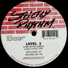 Level 3 - A Day In The Jungle / Around The Way - Strictly Rhythm - SR12122