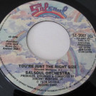 The Salsoul Orchestra - You're Just The Right Size - Salsoul Records - SZ-2007 (C)