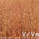 V/Vm - Sometimes, Good Things Happen - V/Vm Test Records - VVMTCD09