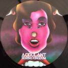 Acidulant - Boring Kingdom - Balkan Vinyl - BV23