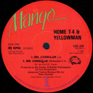 Home T & Yellowman - Mr. Consular - Mango - 12IS 230