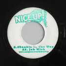 DJ Shepdog - Skankin In The Way / Jah Wish - Nice Up! - NICEUP 004