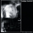 Fudge Tunnel - Hate Songs In E Minor - Earache - MOSH 36