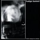 Fudge Tunnel - Hate Songs In E Minor - Earache - MOSH  36