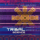Various - Tribal Science (Concept In Dance) - Concept In Dance - DICLP 124