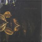 Placid Angles - Touch The Earth - Figure - FIGURELP07, Figure - LP07