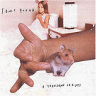 Sonic Youth - A Thousand Leaves - Goofin' Records - goo-03