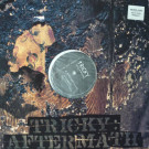 Tricky - Aftermath - 4th & Broadway - 12 BRW 288 DJ