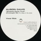 Alison David - Dreams Come True (Afronaught Mix) - Goya Music - AD001