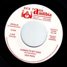 Don Papa / Kambo Super Sound - Coming To My Yard / Kambo Super Dub - Sex Tags Amfibia - AMFIBIA 09