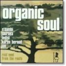 Various - Organic Soul 3 - Soul Brother Records - LP SBPJ 17