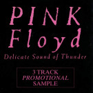 Pink Floyd - Delicate Sound Of Thunder (3 Track Promotional Sample) - EMI - 12 PF1