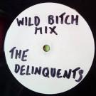 The Delinquents - The Future - Swag Records - SWAG 004