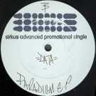 Data With Expert - Paradigm E.P. - Sirkus - SIRK 001
