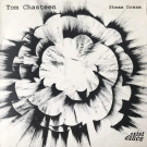 Tom Chasteen - Steam Dream - Exist Dance - ED 030, Exist Dance - Exist Dance 030