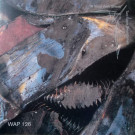 Two Lone Swordsmen - A Virus With Shoes - Warp Records - WAP126