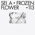 Sei A - Frozen Flower - Turbo - Turbo 113