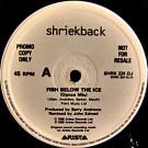 Shriekback - Fish Below The Ice - Arista - SHRK 224 DJ