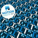 Notion - Digits EP - Formula Records - FRM004
