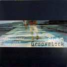 Slam - Groovelock (Deepchord / Echospace Remixes) - Soma Quality Recordings - Soma 329