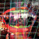 Animal Collective - Centipede Hz - Domino - WIGLP274