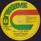 Michael Palmer - Pull It Up Now / Mr. Big Stuff  - Greensleeves Records - GRED 179