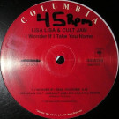 Lisa Lisa & Cult Jam - I Wonder If I Take You Home / Can You Feel The Beat - Columbia - 14405203