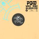 Prince Quick Mix - You Are Sleeping - Yoshitoshi Recordings - YR071