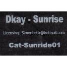 D. Kay - Sunrise - Not On Label - Sunride01