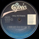 Will To Power - Fading Away - Epic - 49 08183