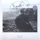 Douglas Dare - Whelm - Erased Tapes Records - ERATP057LP