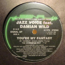 Jazz Voice - You're My Fantasy / Like You - Signal - SIGNAL AP