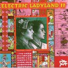 Various - Electric Ladyland II - Mille Plateaux - MP 024 LP